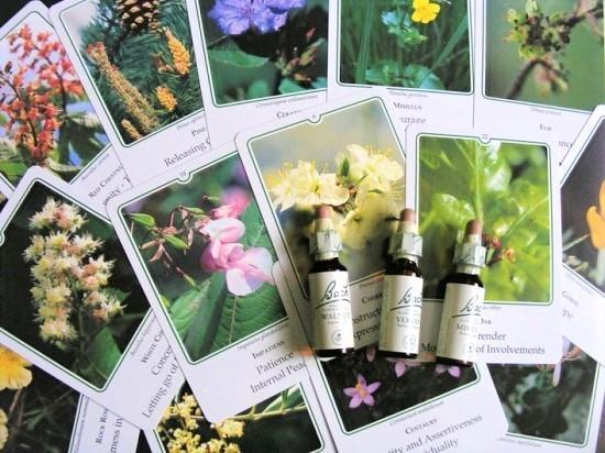 FlowerEsscard.jpg
