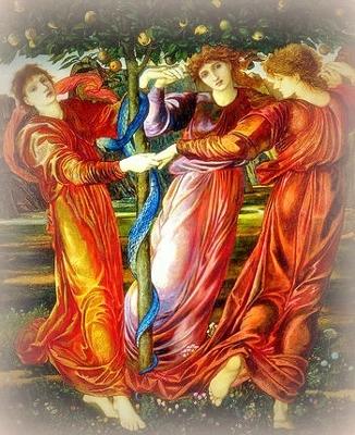 Hesperides_Burne (326x400).jpg
