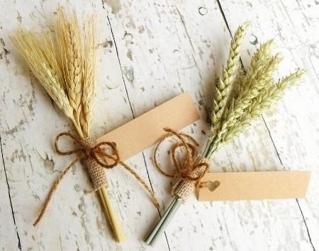 Mini-Wheat(450x354).jpg