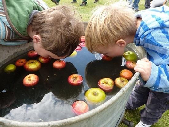 apple-b00.jpg