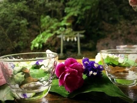 ryuchinalterflower.jpg